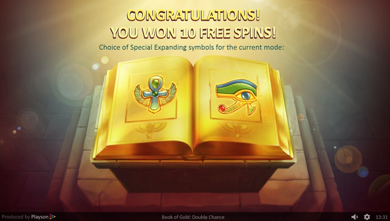 Book of Gold: Double Chance Slots Features