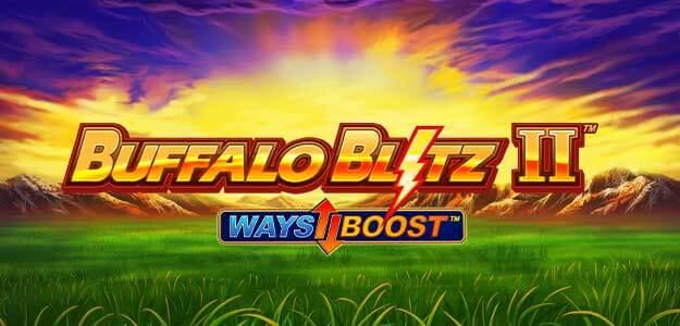 Buffalo Blitz II Review