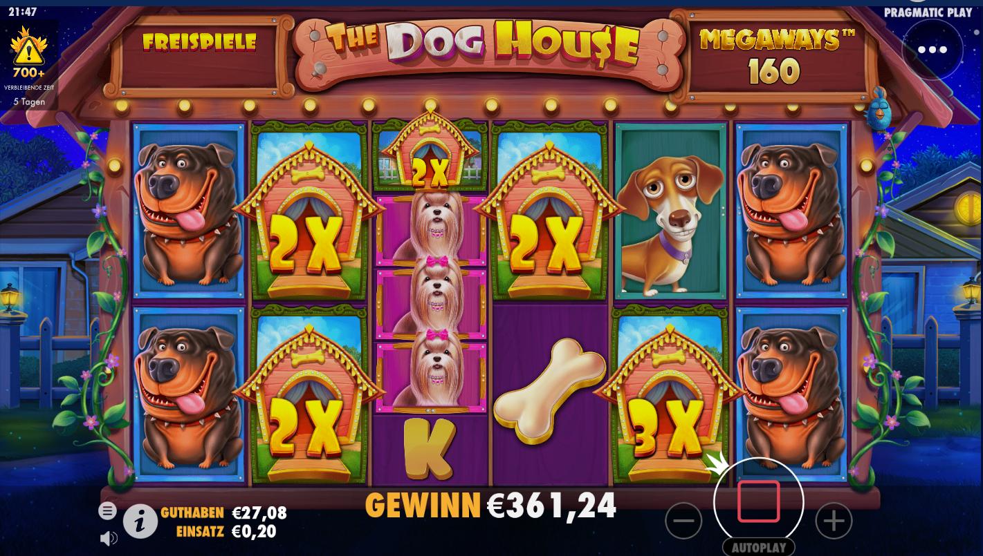 Dog House Megaways Slot Reels
