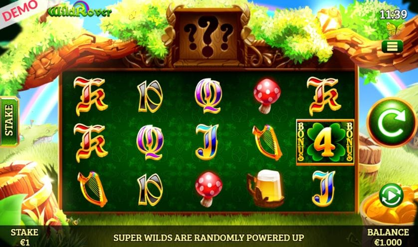 Wild Rover Slots Game