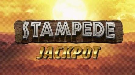 Stampede Jackpot Slot Logo Slots Racer