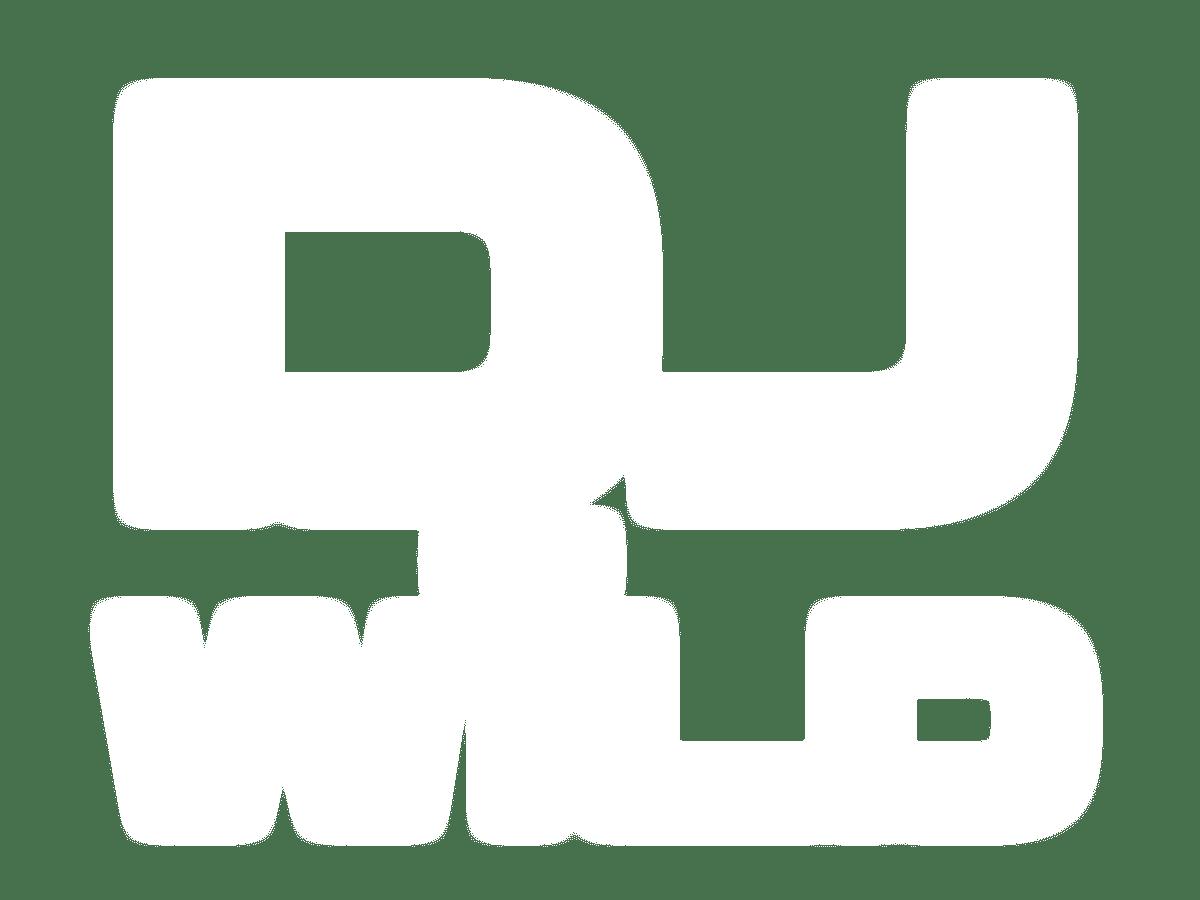 Play DJ Wild Slots Racer