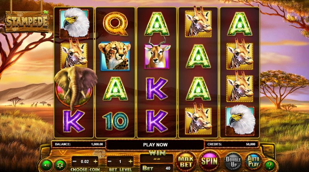 Stampede Slot Gameplay