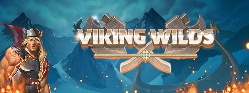 Viking Wilds Slots Racer